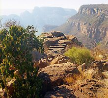 Blyde Canyon Rocks  by Alberto  DeJesus