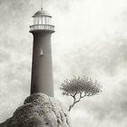 A Certain Light by Mark  Reep