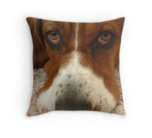Shango July 4, 2011 Throw Pillow