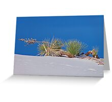 Sideways, White Sands National Monument Greeting Card