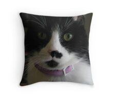Sugar Kittie II Throw Pillow