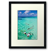 Snorkeling with sharks in the Maldives Framed Print