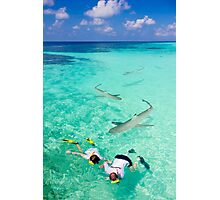 Snorkeling with sharks in the Maldives Photographic Print