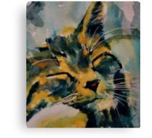 Wee Sleepee Canvas Print