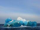 The Blue Berg by Robert Case