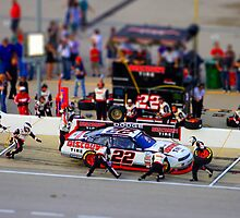 Nascar Miniature by racefan24