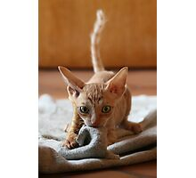 Smeagol Photographic Print