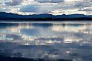 Lake Samsonvale by Renee Hubbard Fine Art Photography