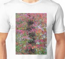 Fall Color Leaves Unisex T-Shirt