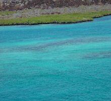 Galapagos Water by Ccarter13