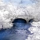 The Stone Arch Bridge by Lori Deiter
