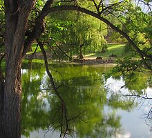 """""""On the Bench By the Pond"""" by dfrahm"""