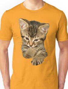 Confucius Kitty Unisex T-Shirt
