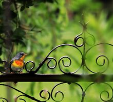 Waiting at the Gate by Lori Deiter