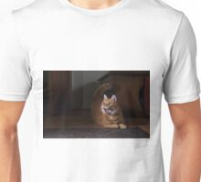 Excited cat Unisex T-Shirt