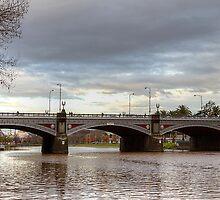 Princes Bridge - (Melbourne) by Barbara  Glover