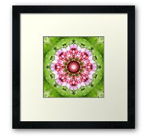 Lilac, Pink and Green Kaleidoscope Framed Print
