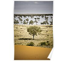 Indinda Swamp - Old Andado, Northern Territory Poster