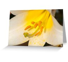 Overflowing with yellow pollen  Greeting Card