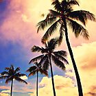 Hawaii Palm by Alexis Dumeng