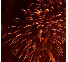 """Ribbon"" Fireworks Photographic Print"