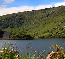 Gougane Barra #1 by Declan Howard