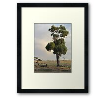 Just me and myself. Framed Print