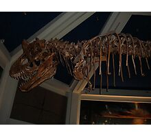 Monstrous Carnotaurus Photographic Print