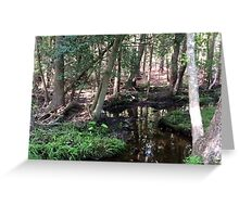 Naturescape 56 Greeting Card