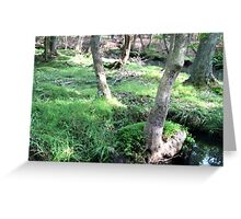 Naturescape 59 Greeting Card