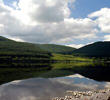 Reflections in St Mary's Loch, near Peebles by rosie320d