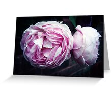 The Wedgwood Rose Greeting Card