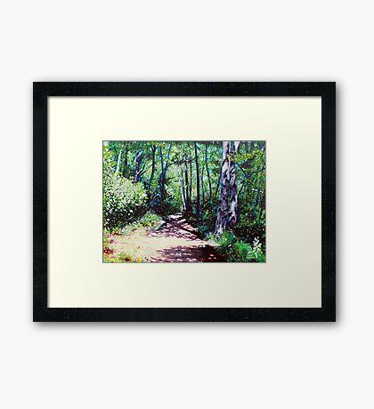 'Sun Shower on the Glen Burney Trail' Framed Print