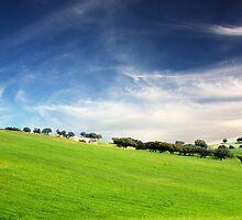 Green Valey by Manuel Fernandes