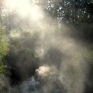 A Bit Steamy by Vanessa Barklay