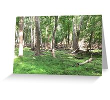 Naturescape 61 Greeting Card