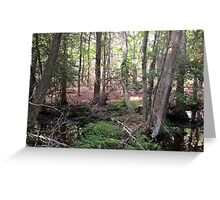 Naturescape 62 Greeting Card