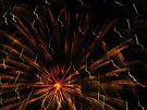 Fireworks by Veronica Schultz