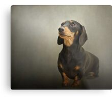 Beautiful Margot Metal Print