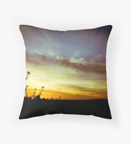 1969, in the sunshine Throw Pillow