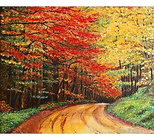 Forest Road Oil Painting Photographic Print