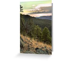 Gila National Forest, NM Greeting Card