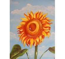 Sun Flower Oil Painting Photographic Print