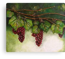 Grapevine Oil Painting Canvas Print