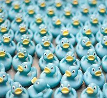 A Sea of Rubber Ducks by Daniel Williams