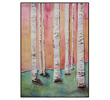 Birch Trees Original Watercolor Painting Photographic Print