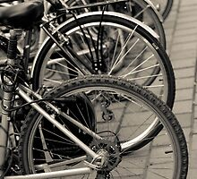 Bicycles Parked in the Street by Daniel Williams
