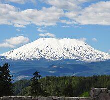 Mount Saint Helens by quiqui lee
