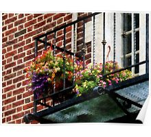 Hanging Basket on Fire Escape Poster