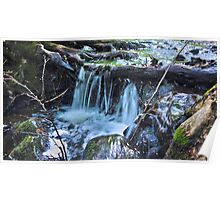 HDR Forrest Waterfall Poster